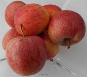 Obst und Gemüse aus Tirol