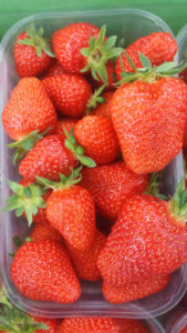 Tiroler Erdbeeren aus Tirol